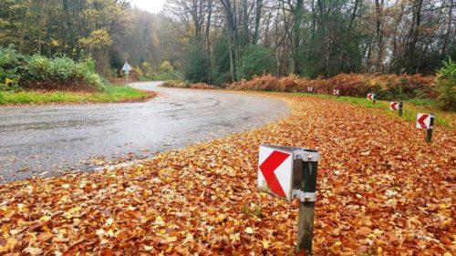 Bochtige weg Zuid-Limburg